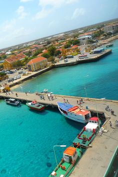Kralendijk Bonaire. Want to live and work on nature and divers paradise Bonaire, Dutch Caribbean. Go to Bed and Breakfast Bonaire For Sale More information on http://bedandbreakfastbonaire.com/
