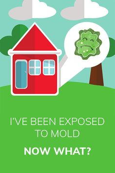 I've Been Exposed to Mold – Now What? Adrenal Health, Brain Health, Gut Health, Health And Wellness, Mental Health, Health Articles, Health Tips, Healthy Lifestyle Blogs, Autoimmune Disease
