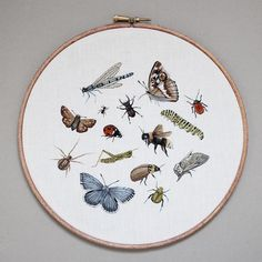 "New listing on Etsy! (Link in bio) An assortment of British Insects It took around 20 hours to complete this 9"" hoop :) hope you guys like it!"
