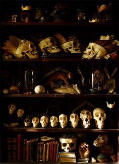 curios display cabinet