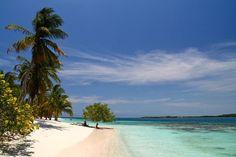 """Morrocoy es un """"paraíso tropical en el Caribe"""" este bellísimo Parque Nacional está ubicado en la costa noroccidental de la costa venezolana En sus 32.000 hectáreas se encuentran las más hermosas playas de arena blanca aguas cristalinas con cálidas temperaturas espectacular fauna submarina que vive entre corales de variados colores manglares una variedad de pájaros que ha convertido a la zona en uno de los sitios predilectos para los observadores de aves.  Imperdibles en Morrocoy: Cayo…"""