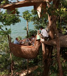 """""""Unique restaurant at the Soneva Kiri resort in Thailand offers unforgettable tree-top dining experience."""" WHAT THE............!!!!!!!!!!!..............and YES, PLEASE!!!!!!!!!!!!!!        Mouth-watering and delicious food is delivered by the waiter via zip line."""