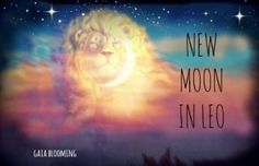 August 14 2015 Energy of the Day NEW MOON IN LEO!