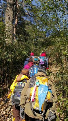 강릉 화부산 산림욕장 산책로