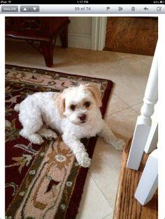 My Bella baby.