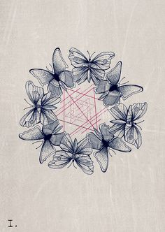butterflies and sacred g / transformation / Sacred Geometry <3