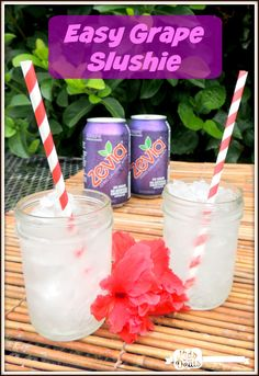 Easy & Healthy Grape Slushie #ZeviaLife #TheNewSweet