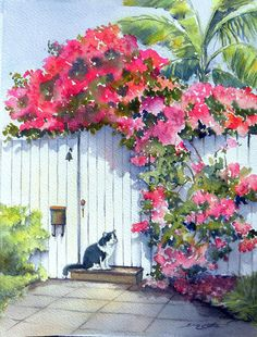 Bouganvillea over Gate with Cat web.jpg (493×648)