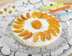 Torta fredda allo yogurt con albicocche