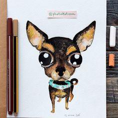 Drawing from instagram @photokotcom #иллюстрация #dog #рисунок #drawing #illustration #sketch #собака #character #photokot_com #чихуахуа #chihuahua #watercolor #акварель