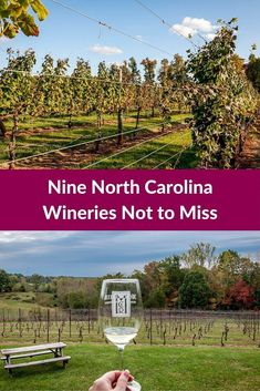 Wine from North Carolina? These nine wineries in North Carolina's Yadkin Valley offer great atmosphere and sophisticated wines | Nine Yadkin Valley Wineries Not to Miss