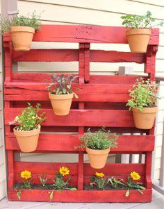 Palet y plantas