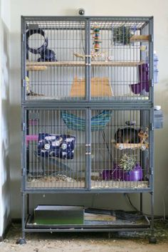 The cage I would love to get for my chinchilla!!!