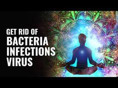 Get Rid Of Bacteria, Fungal Infections, Virus - Dissolve Toxins Binaural Beats Breathing Meditation, Buddhist Meditation, Healing Meditation, Meditation Music, Guided Meditation, Healing Codes, Binaural Beats, Mental Health Support, Fungal Infection
