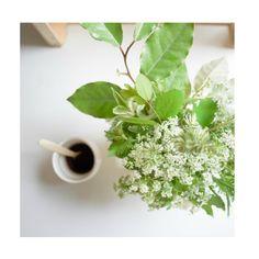 Mmmmh... Bouquet de fleurs des champs et un bon café! #mintandlilies #ruedaguerre #paris #morning #coffee #verrebeldi