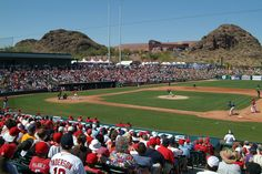 Go to Arizona with the family for spring training in March!!