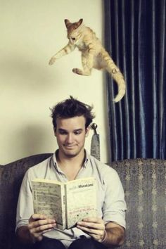 perfectly timed photos, cat jumping on head
