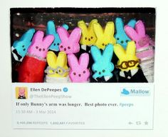 23 Most Creative Entries from this Year's Peep Diorama Contest