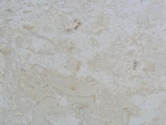Coral Natural Stone -  Manufactured  from South East Asia and the Caribbean, this stone is distinguished by fossilized inlays and marks of sea organisms.  Coral's neutral color and rich texture adds elegance and luxury to your interior or exterior design. This distinctive stone attracts attention and is often used for dramatic entrances, stylish foyers and as feature walls or as a perfect option for outdoor …