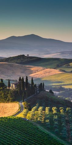 Scenic Tuscany landscape with rolling hills and valleys in golden morning light, Val d'Orcia, Italy. Scenic Tuscany landscape with rolling hills and valleys in golden morning light, Val d'Orcia, Italy. Tuscany Landscape, Nature Landscape, Landscape Sketch, Landscape Photos, Landscape Paintings, Landscape Lighting, Japanese Landscape, Valley Landscape, Countryside Landscape