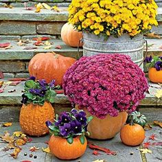 """Carve Out a """"Mumkin"""" 