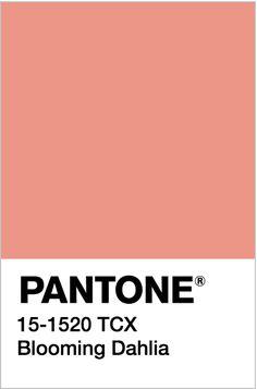 Pantone Swatches, Color Swatches, Pantone Colour Palettes, Pantone Color, Colour Schemes, Color Combos, Pallette, Vintage Colour Palette, Benjamin Moore Colors
