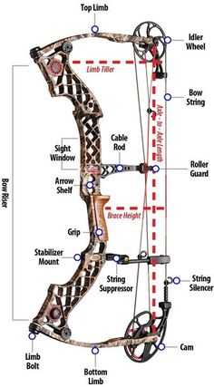 compound bow review for beginners archery pinterest. Black Bedroom Furniture Sets. Home Design Ideas