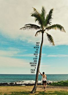 """May you never be too busy to stop and breathe under a palm tree."""