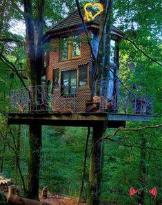Vivez un rêve d'enfant et perchez vous dans une cabane en bois, au coeur d'une…<br>