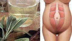 Salvia: come fare il potente infuso naturale che sgonfia il tuo addome in 20 minuti | TuttiVip Salvia, Health, Hobby, Biscotti, Stress, Shape, Diets, Faces, Baking Soda