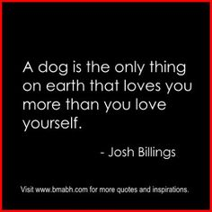 Love Yourself Quotes And Sayings on www.bmabh.com #unconditional love. Follow us for more awesome quotes: https://www.pinterest.com/bmabh/, https://www.facebook.com/bmabh