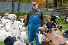 Tips for Detecting Disease or Injury in Sheep and Goats Photo by Edwin Remsburg