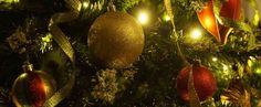find de gode #julegaver til babyerne iblandt det sunde legetøj | shopsites.dk