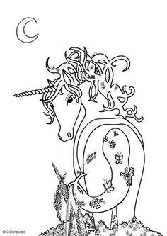 Free Printable Coloring Image Unicorn Page 15