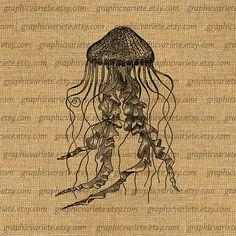 Jellyfish Ocean Sea Digital Image Download by GraphicVariete, $1.00
