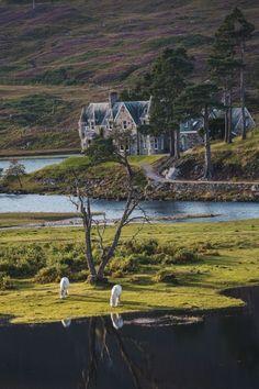 Glen Affric, Scotland.