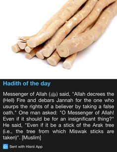 Hadith of the day Decreed- an official order with the force of law. Prophet Muhammad Quotes, Hadith Quotes, Muslim Quotes, Quran Quotes, Islam Hadith, Islam Quran, Islamic Phrases, Islamic Quotes, Faith Sayings