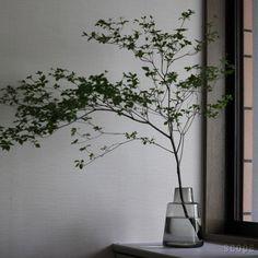 Holmegaard : Flora ベース24cm