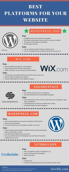 Best Platforms For Your Website Or Blog Infographic