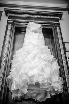 Kitchener Ontario, Terrace Hotel, Old World Style, Hotel Wedding, One Shoulder Wedding Dress, Weddings, Wedding Dresses, Bride Dresses, Bridal Gowns