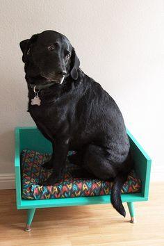 A big black dog sitting in a small DIY midcentury modern stye dog bed.