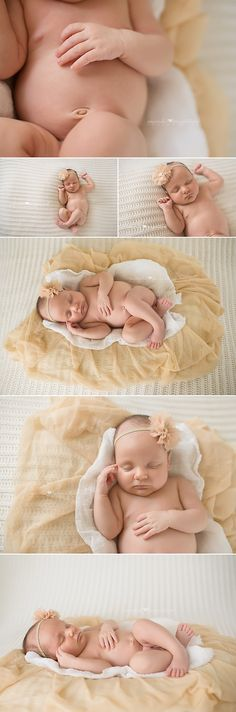 Newborn Baby Girl Photos... love the layered look under the baby. will have to try