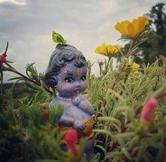 ❣☘❤ Yashoda Krishna, Shri Hanuman, Bal Krishna, Krishna Statue, Krishna Art, Iskcon Krishna, Shree Krishna, Little Krishna, Cute Krishna