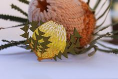 Wood Flower Brooch-Australian Wildflower by XaviahCollections