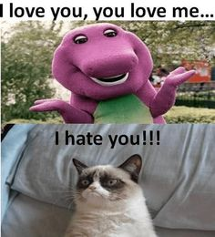 Funny Animal Memes That Will Make You Lol Delight in funny pet memes that include pet cat memes, your favored pet memes, amusing squirrel memes, cute bear memes as well as a great deal much more that will make you laugh! Grumpy Cat Quotes, Funny Grumpy Cat Memes, Funny Animal Jokes, Cute Funny Animals, Funny Animal Pictures, Funny Cats, Funny Jokes, Funny Pet Quotes, Cute Cat Memes