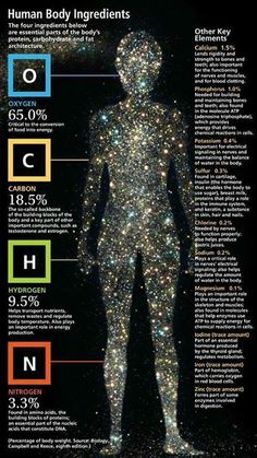 Human Body Ingredients | Biology, Campbell and Reece, www.aquamiracles.com