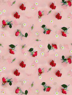 Floral Wallpaper Phone, Flower Background Wallpaper, Scenery Wallpaper, Wallpaper Iphone Cute, Flower Backgrounds, Aesthetic Iphone Wallpaper, Flower Wallpaper, Nature Wallpaper, Wallpaper Backgrounds