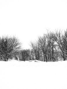 February by Painted Light Studio (hardpan photo), via Flickr