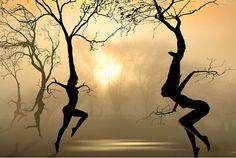 ☆ Dancing Trees :: Artist Igor Zenin ☆