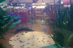 Fishis